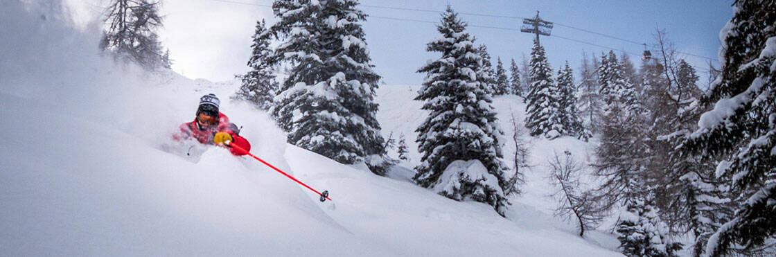 skieur dans la poudreuse entouré de sapins